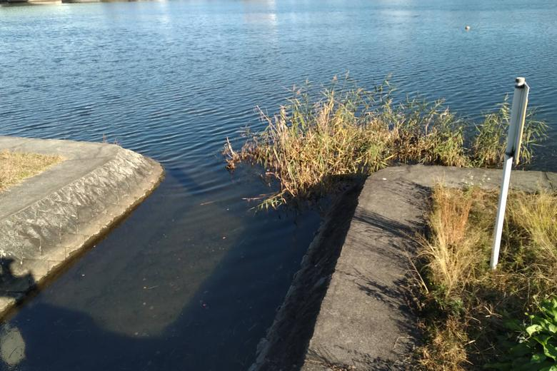 小さな水路の流れ込み