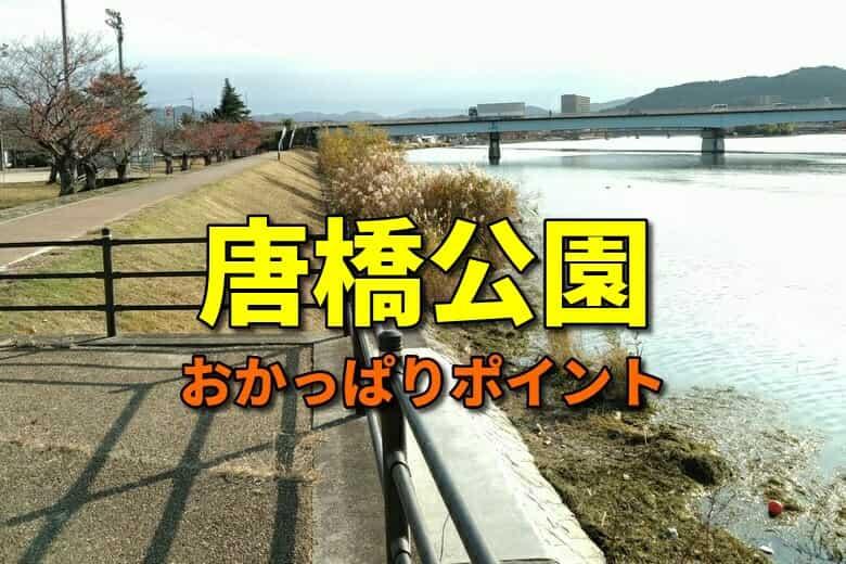 唐橋公園のおかっぱりバス釣りポイント
