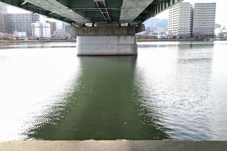 東岸側の、瀬田川大橋の下