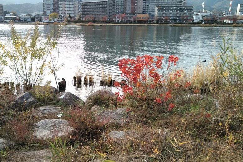 唐橋公園の前の石積みの岸辺