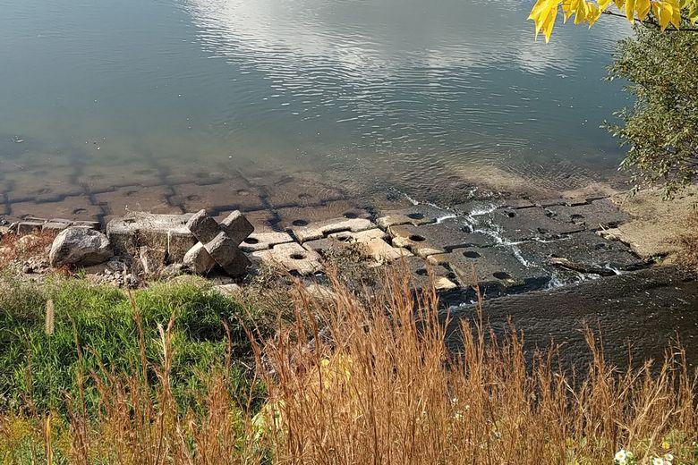 小山川の流れ込みとブロック