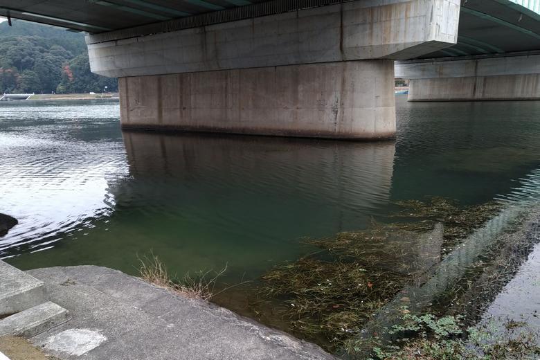 瀬田川西岸の名神高速道路の高架下