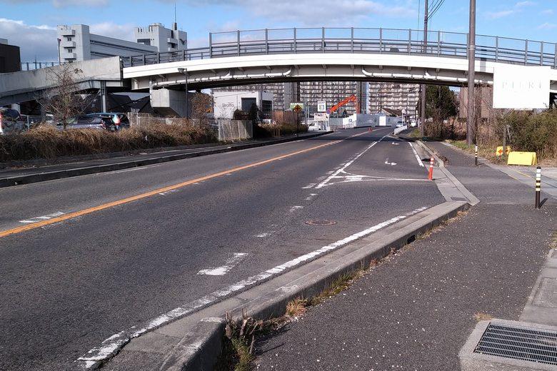 ピエリ守山の前を通る、県道559号線