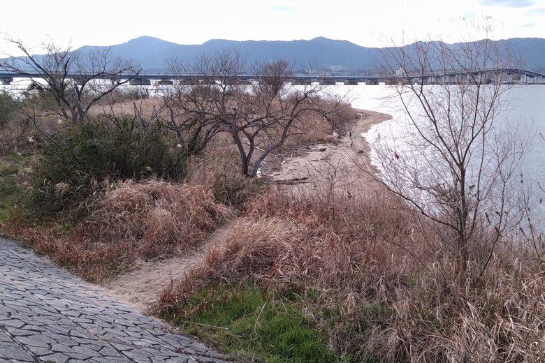 ピエリ守山裏の南にある、砂浜の張り出し
