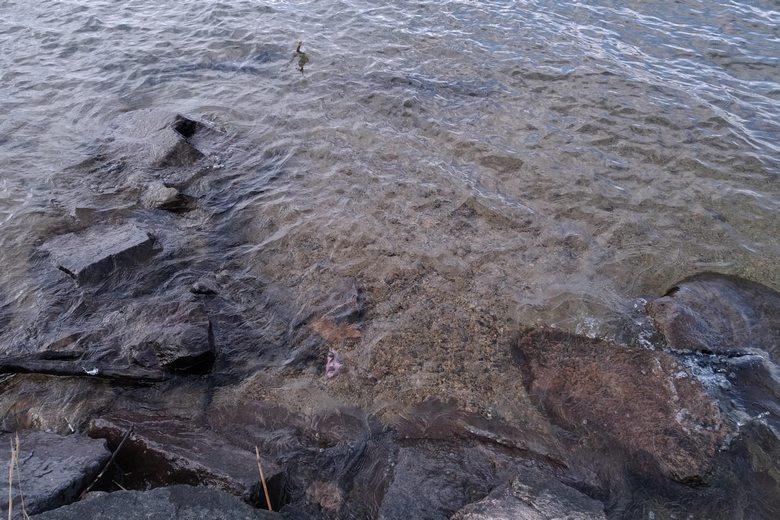 足下の石積みを浅瀬