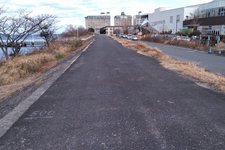 ピエリ守山裏の歩道