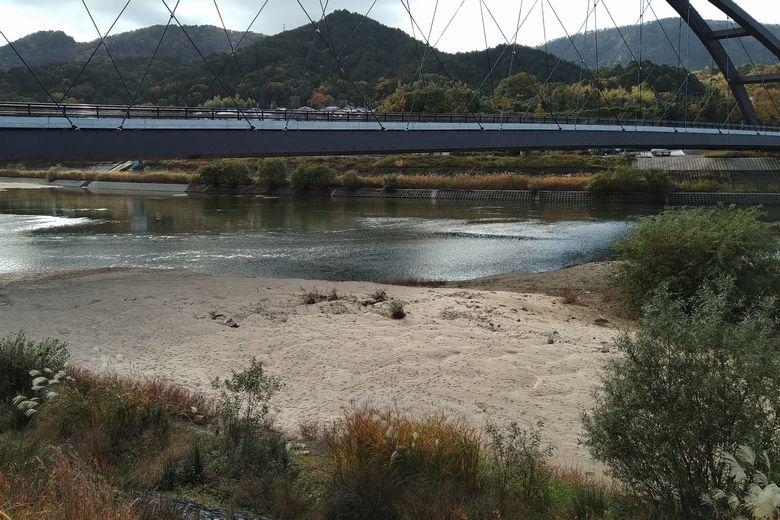 瀬田川令和大橋のしたに溜まった砂