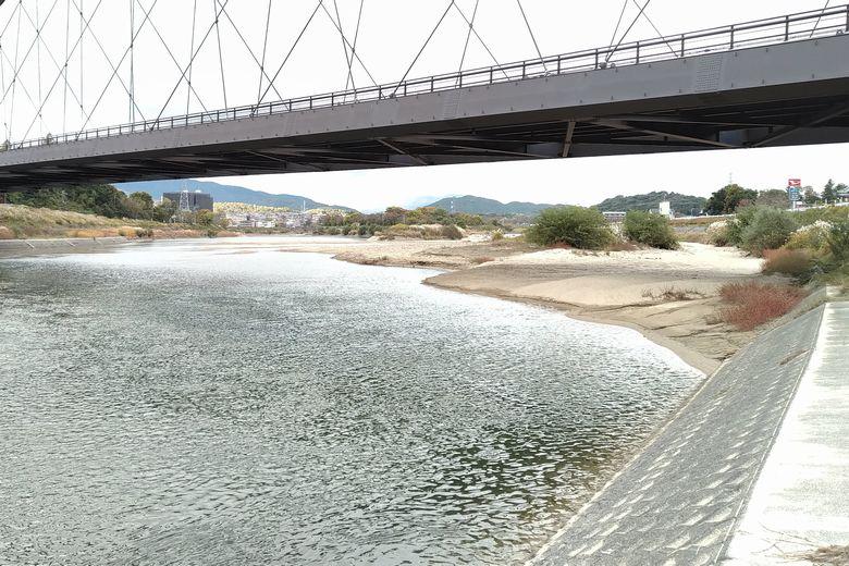 瀬田川令和大橋の下の様子