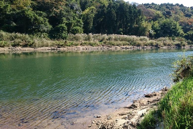瀬田川の下流エリア
