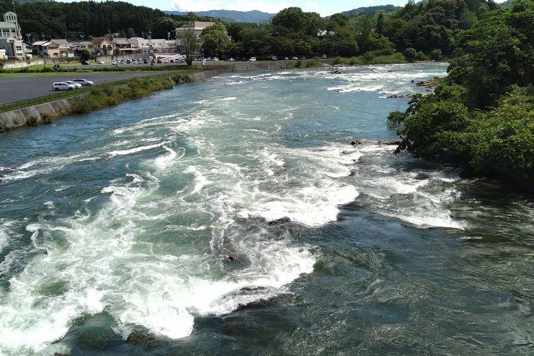 瀬田川下流の大石エリア
