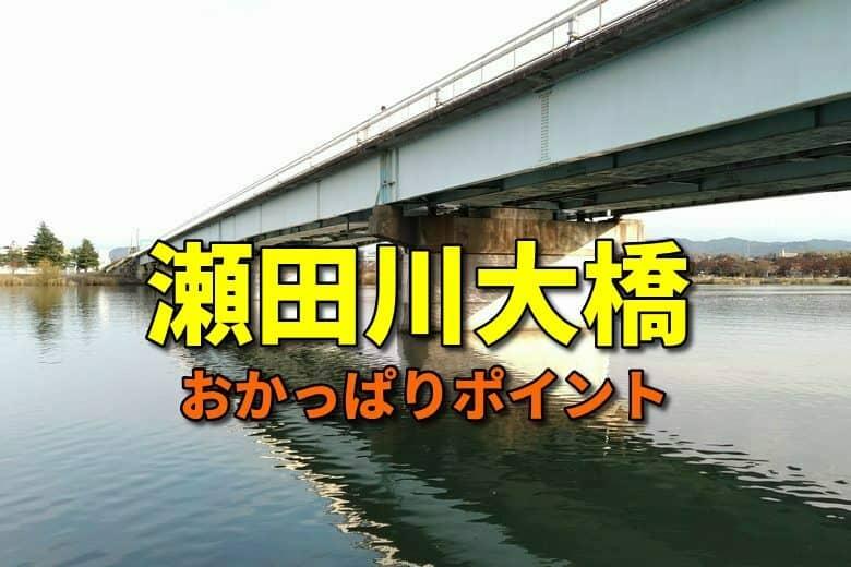 瀬田川大橋の周辺のおかっぱりバス釣りポイント