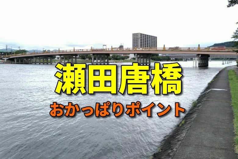 瀬田唐橋のおかっぱりバス釣りポイント