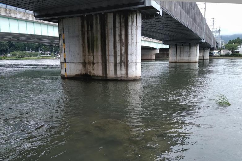 新幹線の高架下の浅瀬