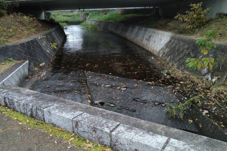 篠部川の水路