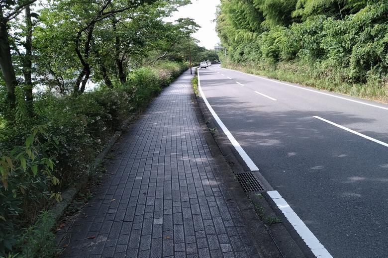 道路と植木や雑木