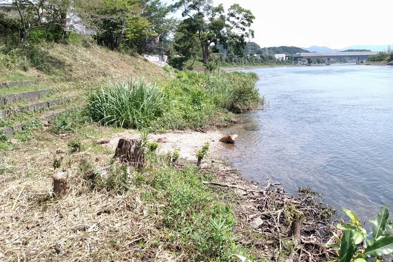 浅瀬の岸辺と、南に見える京滋バイパス