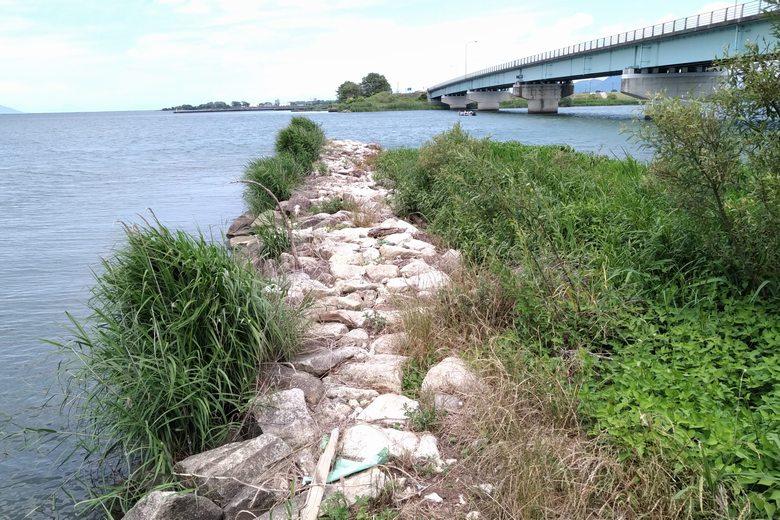 野洲川河口の南の石積み突提