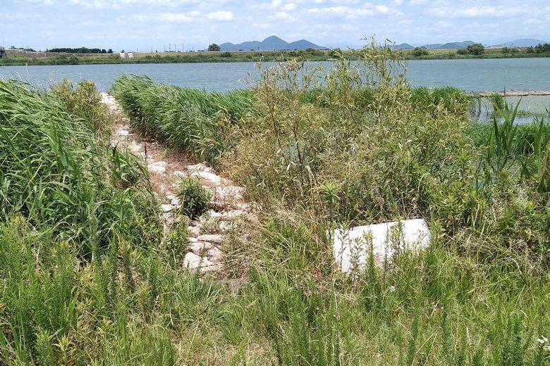 野洲川河口の石積み突提と看板