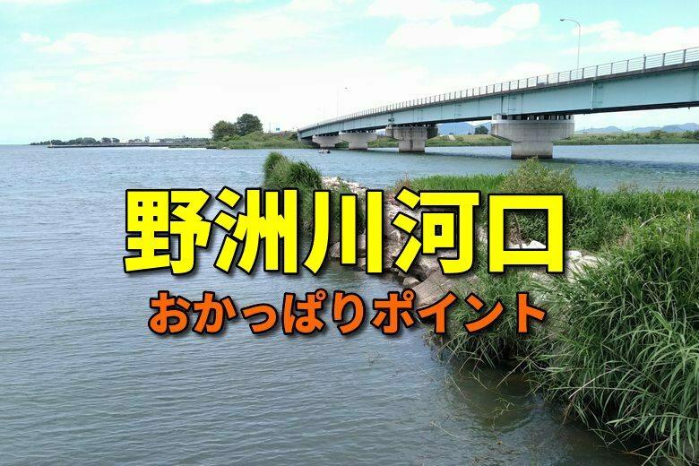 野洲川河口のおかっぱりバス釣りポイント