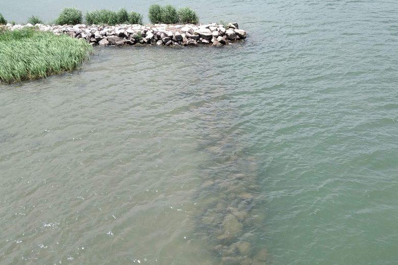 野洲川の石積み突提と、岸沿いの石積み