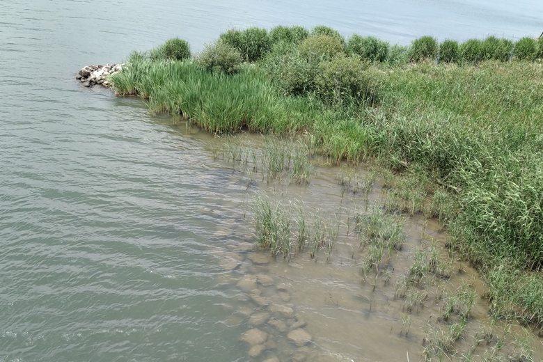 野洲川河口の、南側の石積みのブレイク