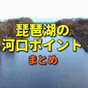 琵琶湖の河口ポイントのまとめ