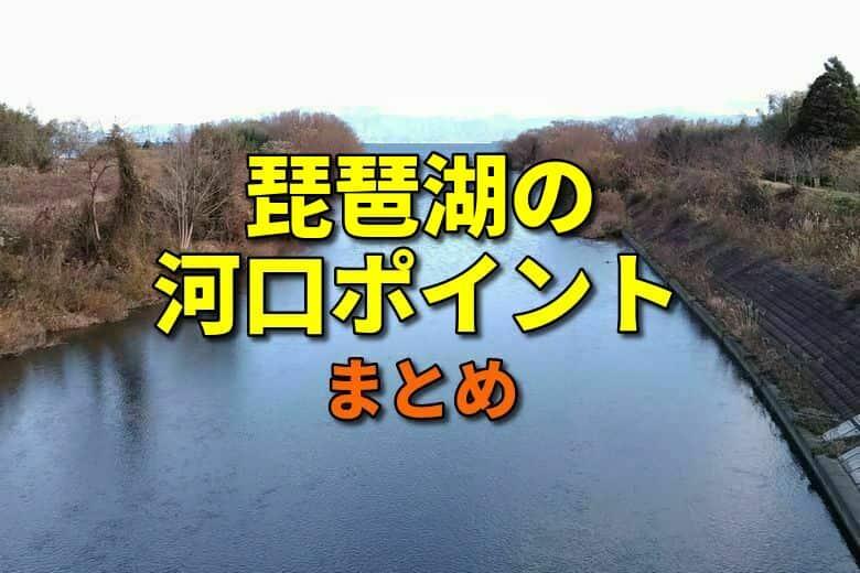 琵琶湖の河口ポイント一覧