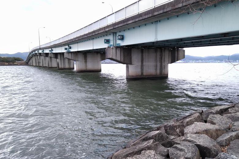 石積み護岸から狙える橋脚のポイント
