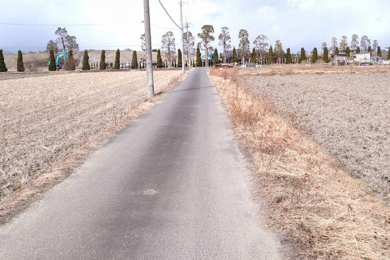 伯母川沿いの細い農道